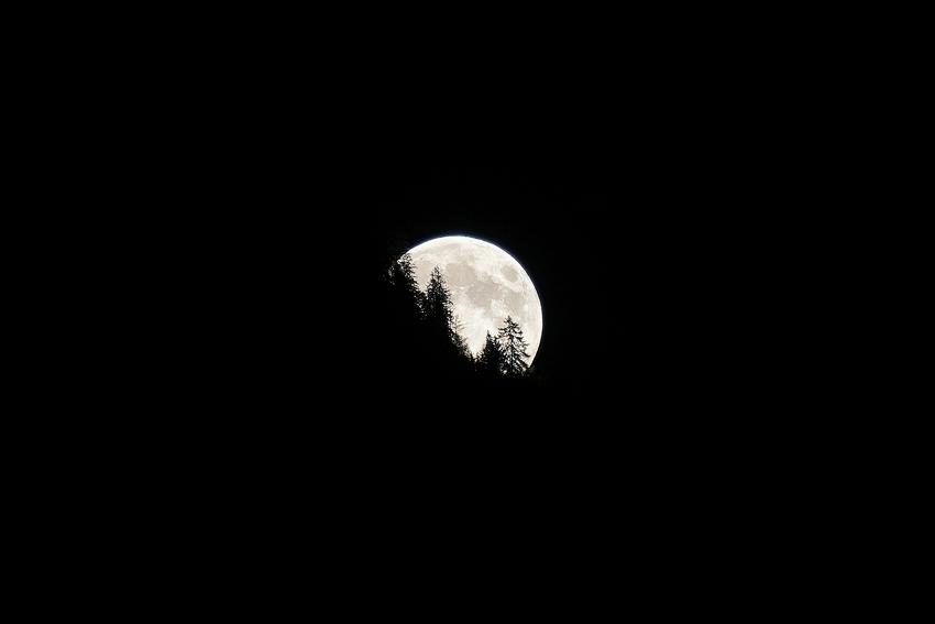 Moonrise [no. 1682]