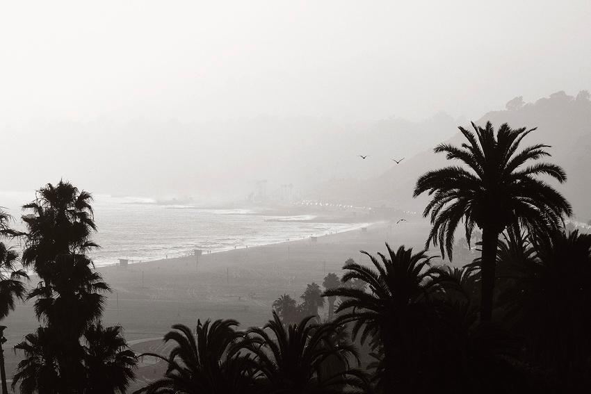 Santa Monica Beach [no. 979]
