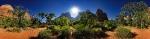 Zion National Park Panorama [no. 915]