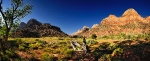 927 -  Zion National Park Panorama